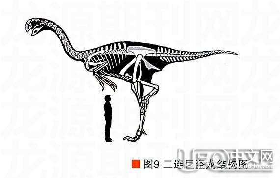 白垩纪时代  恐龙怎么灭绝的85 / 作者:伤我心太深 / 帖子ID:21178