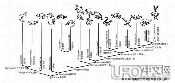 白垩纪时代  恐龙怎么灭绝的65 / 作者:伤我心太深 / 帖子ID:21178