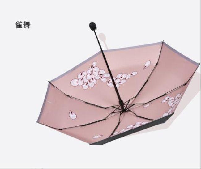 Albany(NY) customized umbrella online